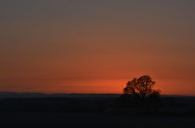 Redhill sunset 130421_DSC0862