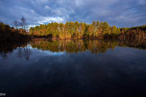 j harry rich state forest massachusetts new england nature landscape sunrise