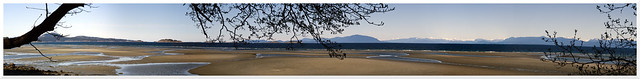 BC West Coast Panorama from Vancouver Island (14 images) - Olympus OM-D E-M10 Mark II with Legacy Yashica 1:1.9 50mm DSB Prime (C/Y mount) with Fotodiox C/Y to M43 Adapter
