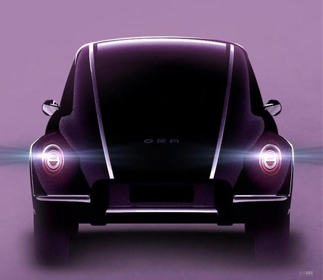 ORA-Beetle1