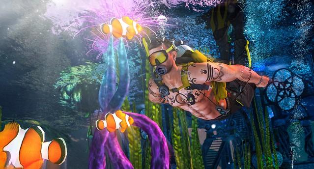 Underwater Adventures #AdamsPhotoChallenge
