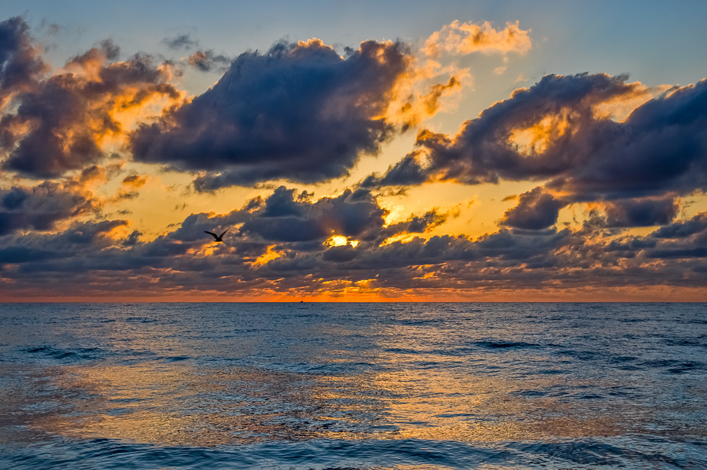 Coastal sunrise III