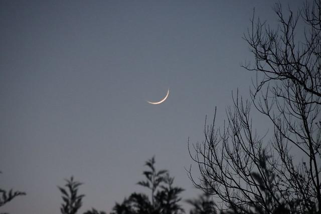 Waxing crescent moon over Merrick