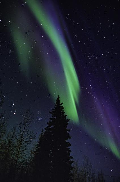 Twilight Aurora