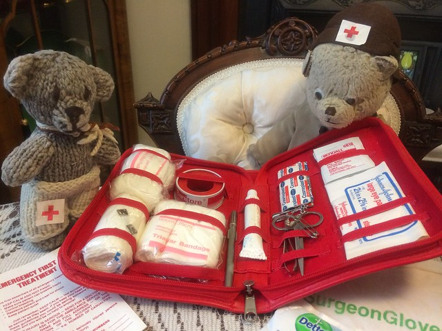 Nurse Paddington and Junior Nurse Scout to the Rescue!