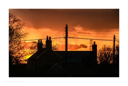 europe greatbritain england nottinghamshire newarkandsherwood grassthorpe sunset landscape orange sky silhouette dark black