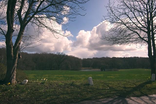 Landschaft - Landscape   Schleswig-Holstein    2021:04:13 11:21:45