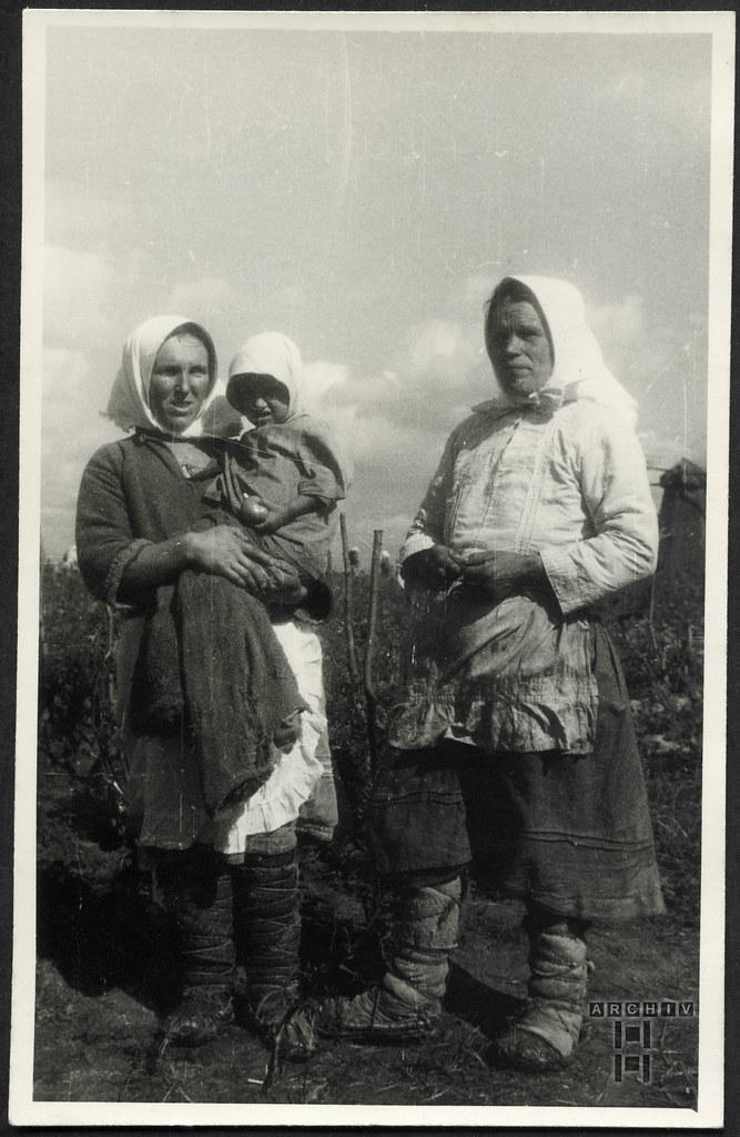 ArchivTappen23AAl2i456 Meine Dienstzeit, Rußlandfeldzug, WWII, 1939-1945
