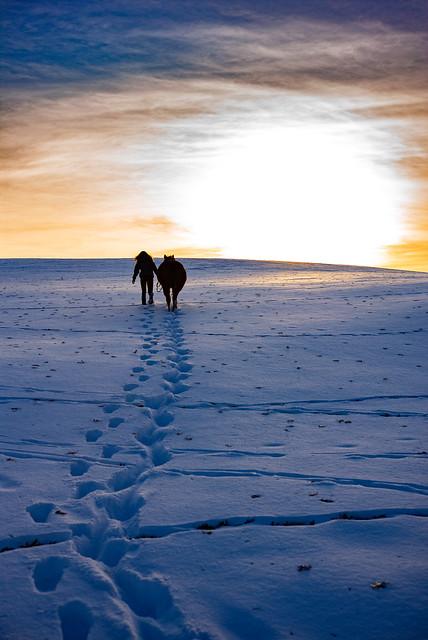 Walking toward the sun