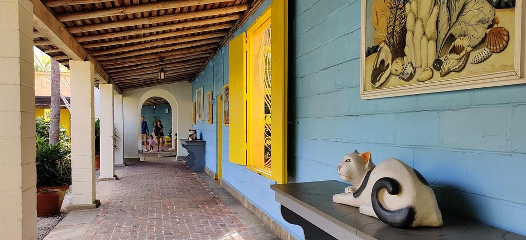 20210131 (029) Bonnet House Museum & Gardens Fort Lauderdale Broward County Florida USA
