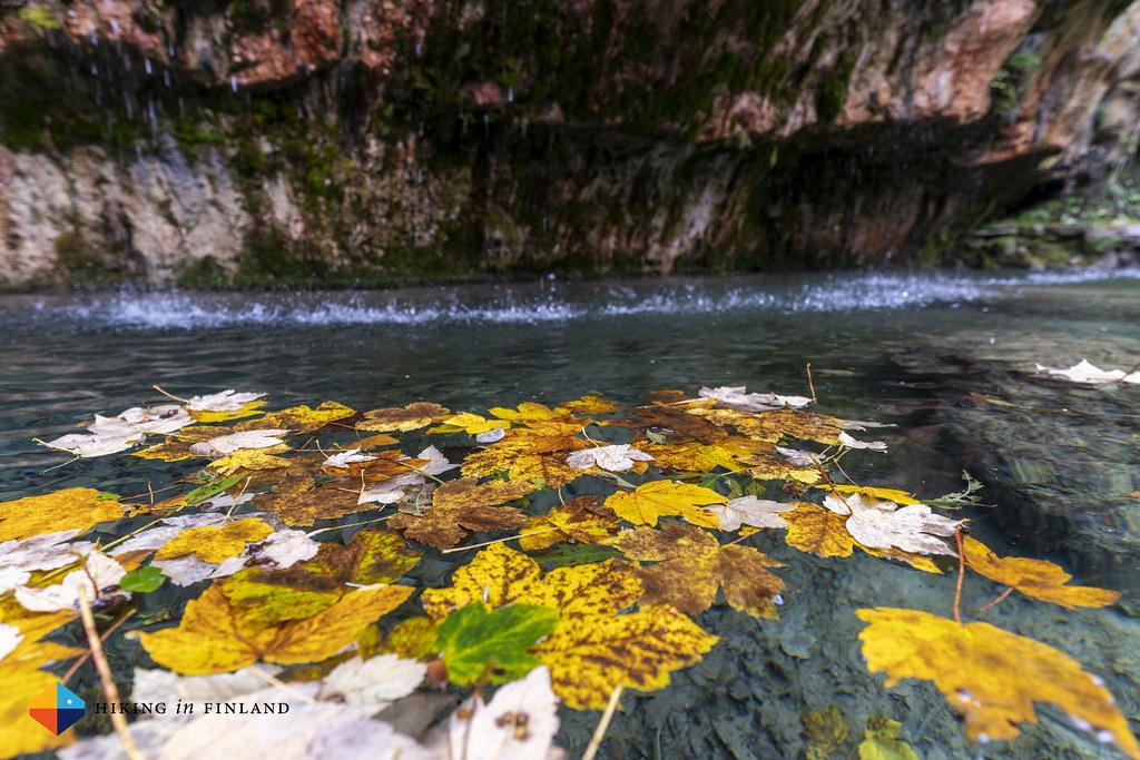 Autumn at the Kalktuffquelle