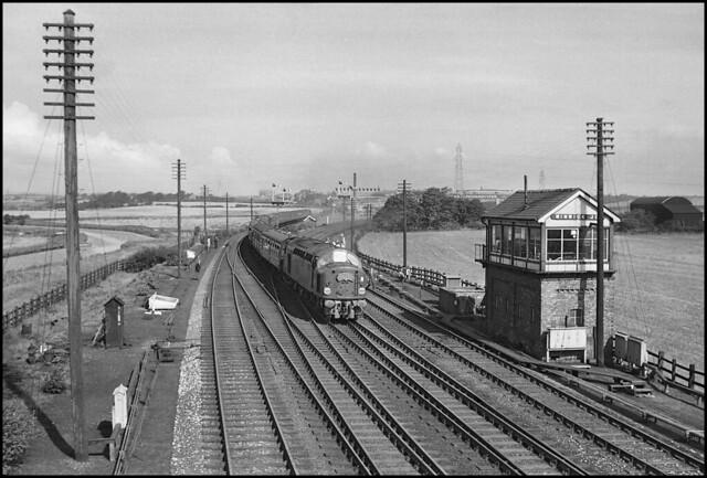 Winwick Junction, D225 diverted 'Merseyside Express' (10.05 Liverpool Lime Street - London Euston) August 1960. Photo: Eddie Bellass.