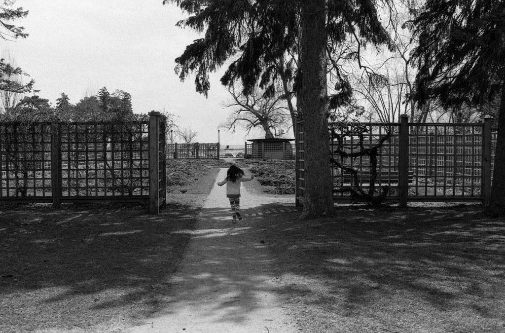 Running Into the Gairloch Rose Garden
