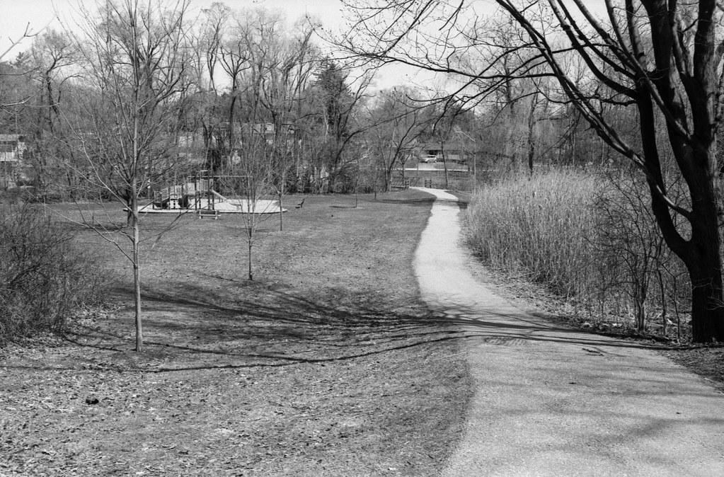 Pinewood Park Looking Toward Morrison Heights_