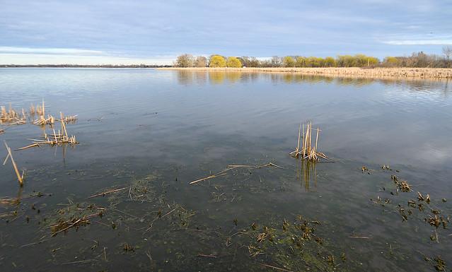 Lake Ontario still Low