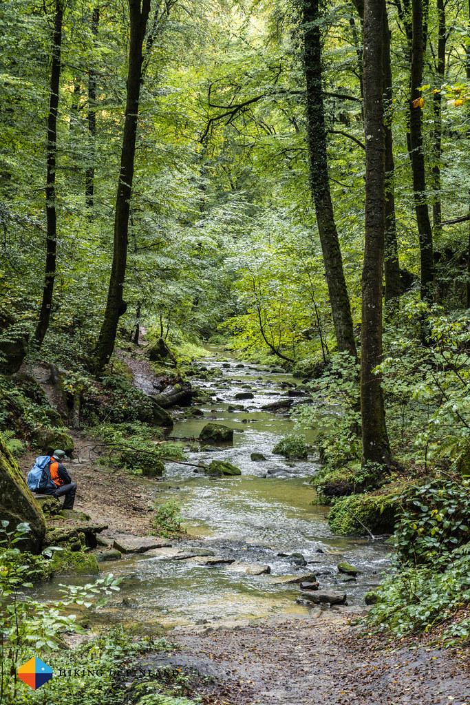 Along the green stream