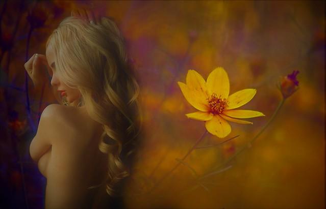 If I had a flower for every time I thought of you I could walk through my garden forever  Se avessi un fiore ogni volta che penso a te, potrei camminare in un mio giardino per sempre ― Alfred Tennyson