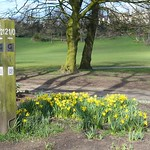 Guild Wheel mile marker at Avenham Park