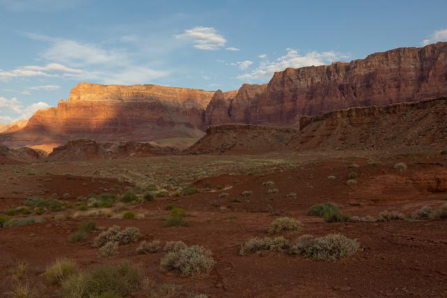 Arizona Layers