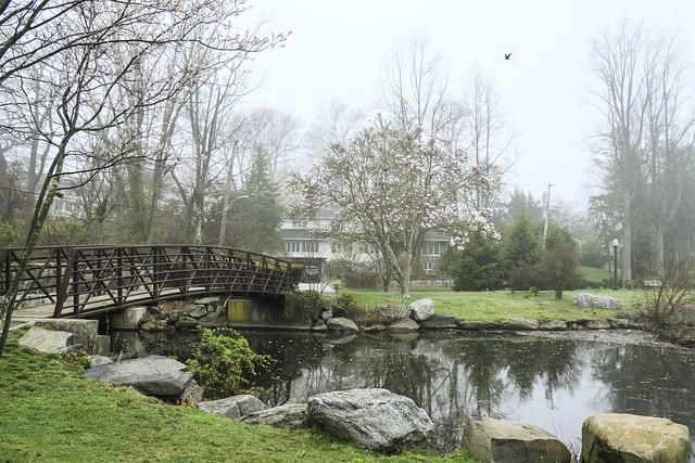 Bridge over the Lake