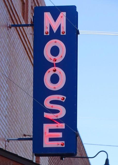 IL, Pittsfield-U.S. 54 Moose Lodge #420 Neon Sign