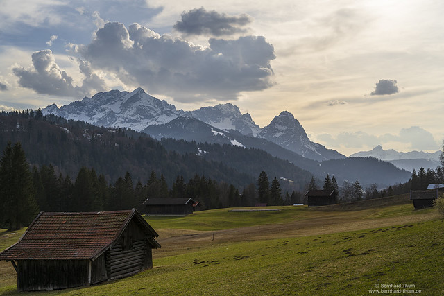 Early spring meadows and Wetterstein
