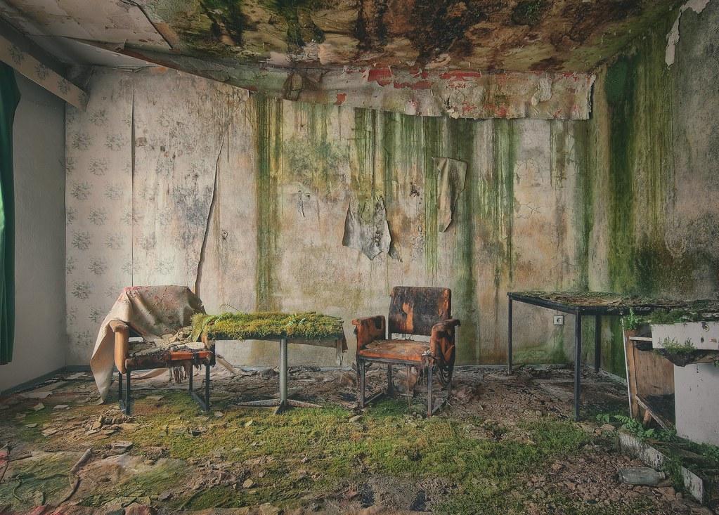 - greenganic VIII -