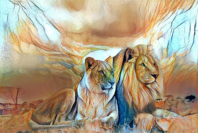 Lion Pair Portrait Dream