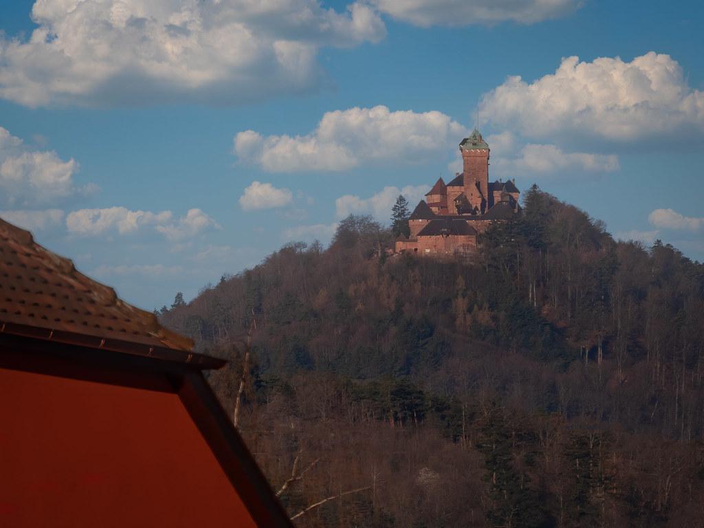 Le Haut-Koenigsbourg depuis Eguisheim. 51116425210_1f704c7eb8_b