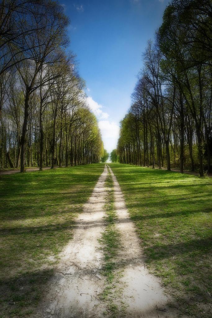 Allée au Parc de Saint Cloud