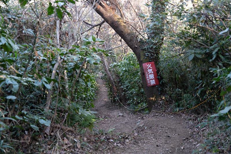 下山コース