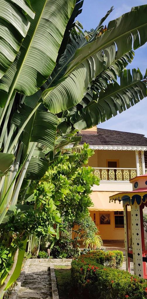 20210131 (030) Bonnet House Museum & Gardens Fort Lauderdale Broward County Florida USA