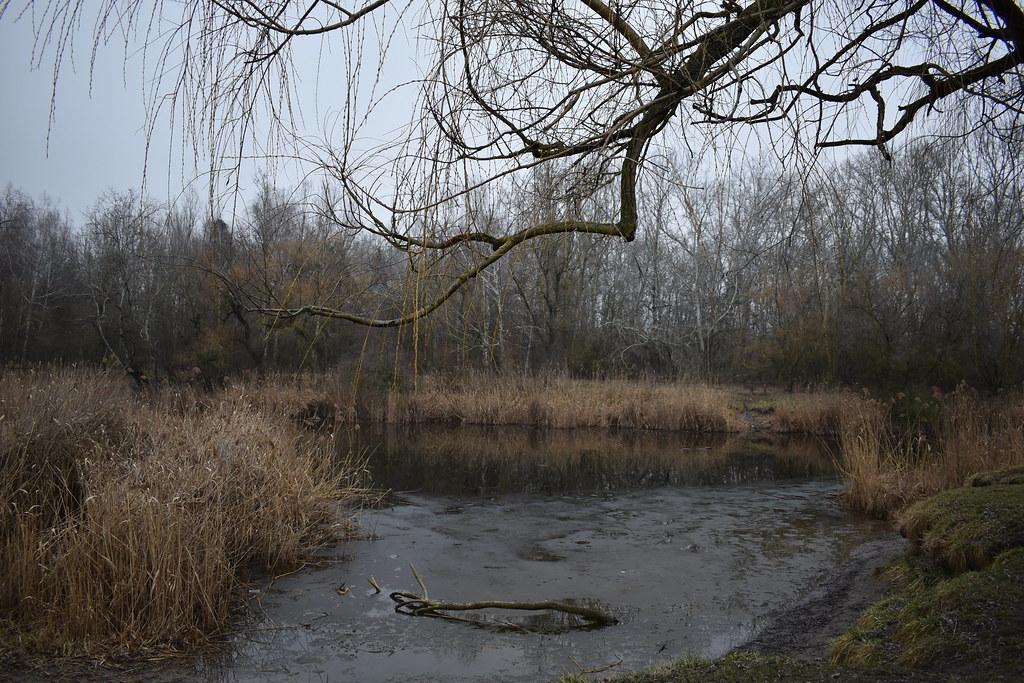 Csalánosi Fishing Lake, Kecskemét, Hungary
