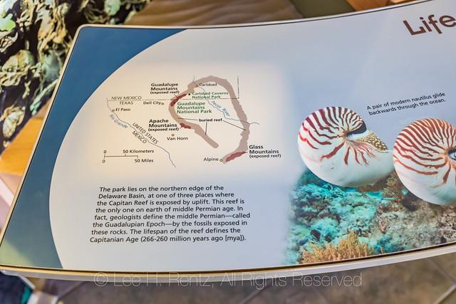 Interpretive Display in Carlsbad Caverns