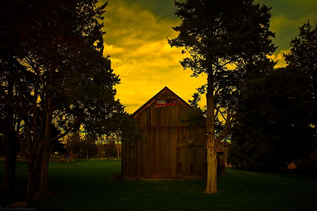 Shed in Spectral Light