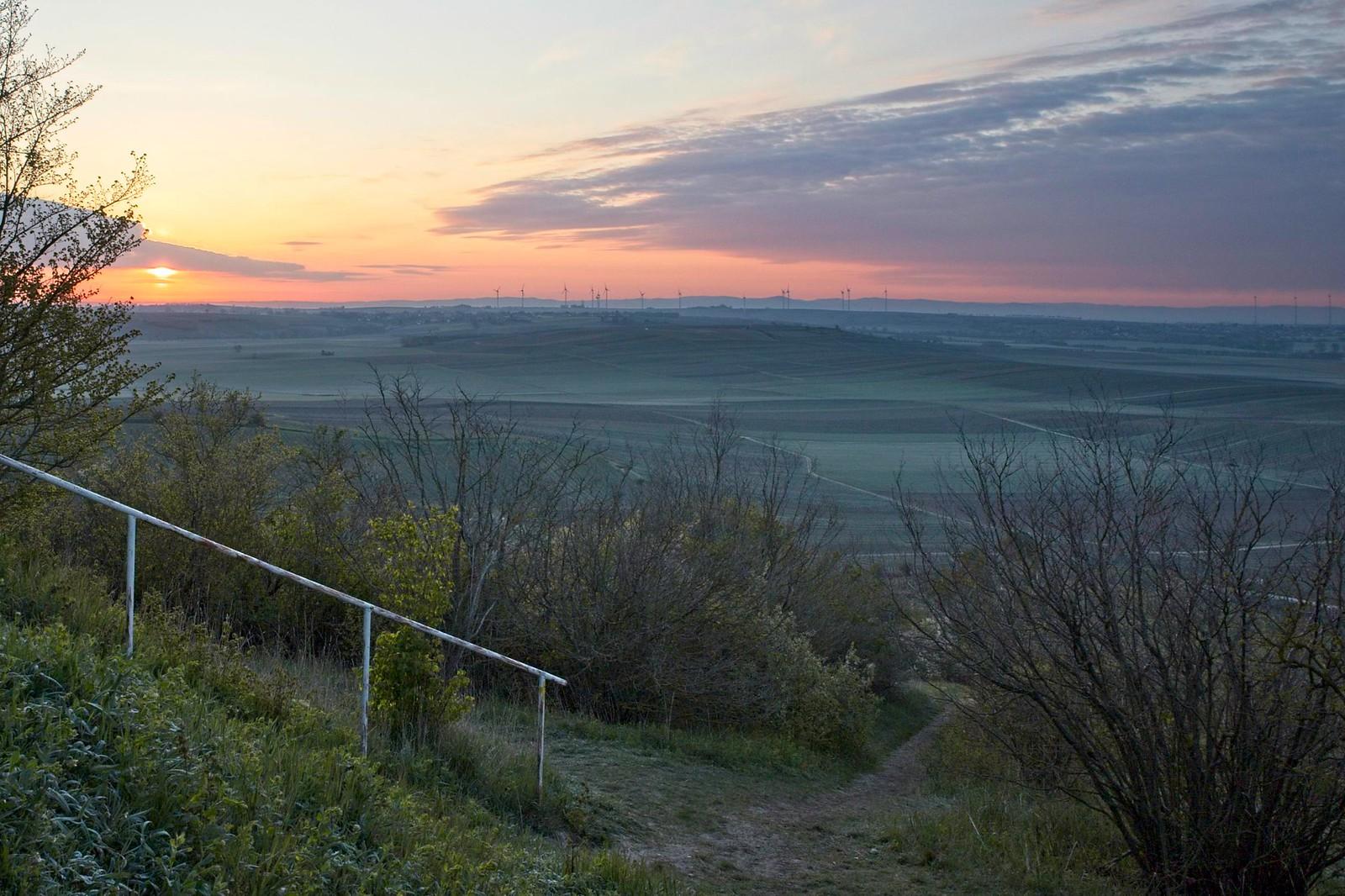 Sonnenaufgang über Rheinhessen