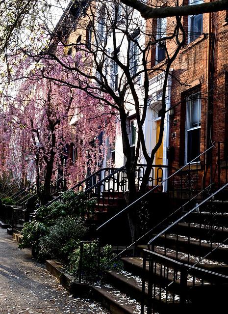 Spring City Street