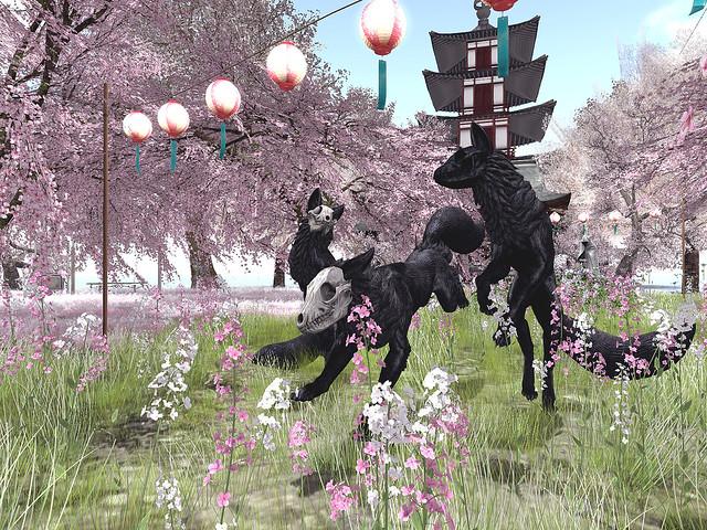 Neverending - Sakura Tales -Skull Foxes At Play