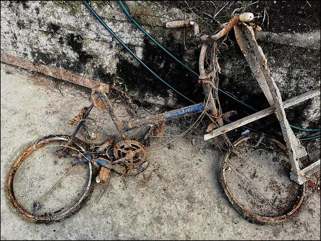 Oxford Deceased Bicycles