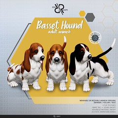 [Rezz Room] Basset Hound Animesh (Companion)