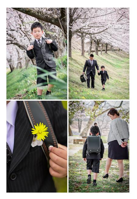小学校入学記念のロケーション撮影 桜並木の下で 愛知県瀬戸市