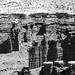 Moab - Mesa Verde Apr. 2021-3728.jpg