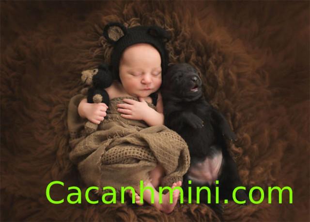 Tình bạn đẹp giữa trẻ em và động vật