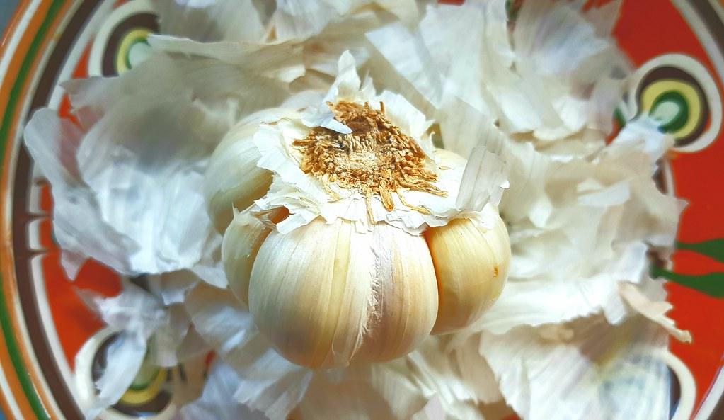20210416 Knoblauchzwiebel auf ihren geschälten Tunicen / Garlic bulb on its peeled tunics