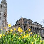 Spring colour in the centre of Preston