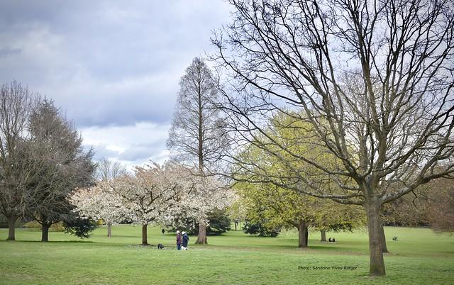 Spring in Cheam Park, Surrey, UK