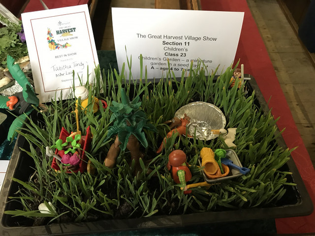 Children's Best in Show - Tabitha Tandy - A Miniature Garden in a seed tray