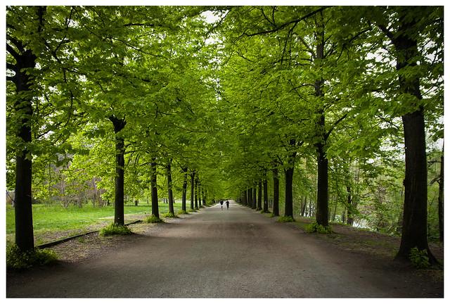 Verde Parco Colletta
