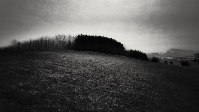 provincial notes/ the land CCCXXIII