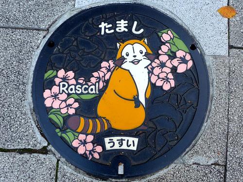 Tama Tokyo, manhole cover 6 (東京都多摩市のマンホール6)